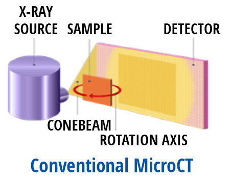 conventional microCT