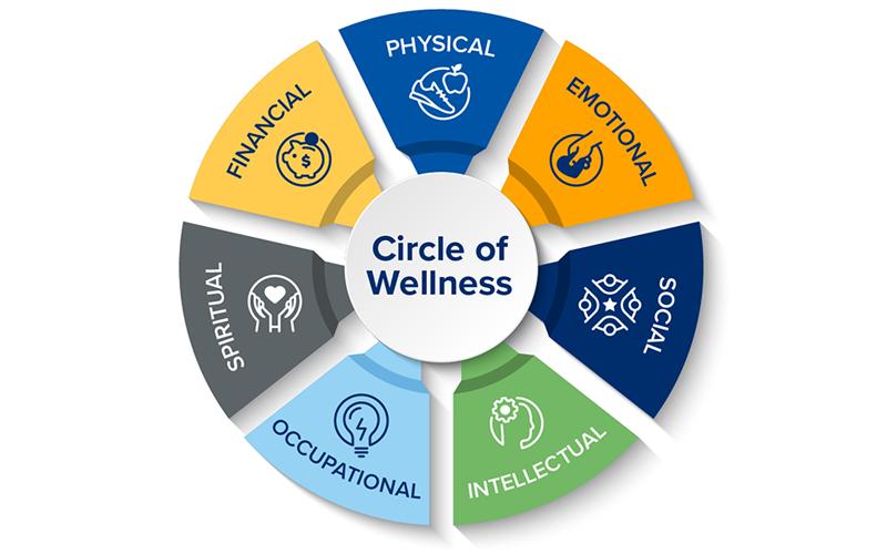 Physical, Emotional, Social, Intellectual, Occupational, Spiritual, Financial