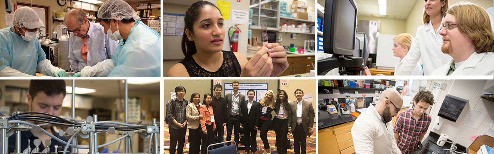 pharmacology and neuroscience
