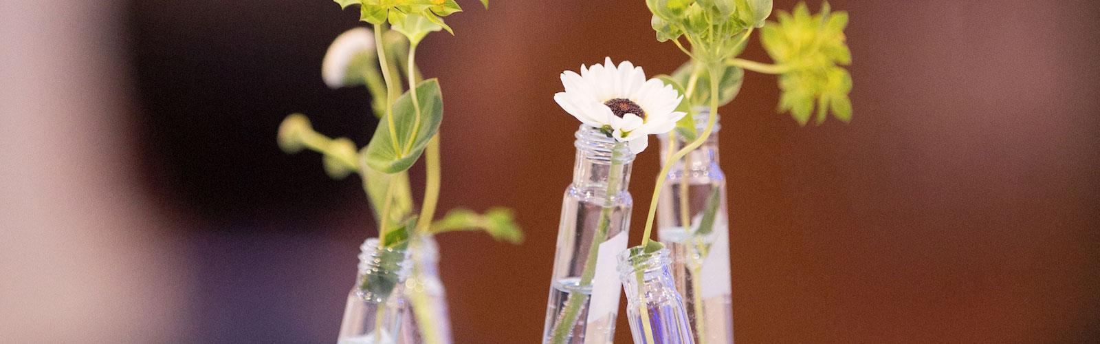 test tube flowers